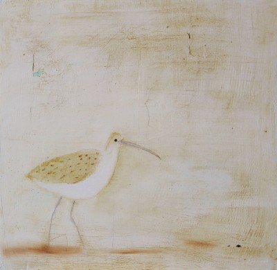 Curlew painting by artist Andrew SQUIRE