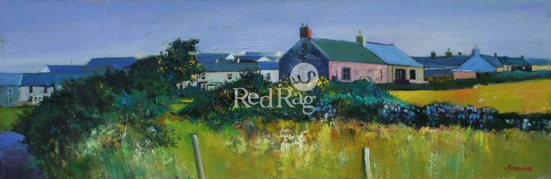 Davy BROWN - Cottage with Gorse Bushes