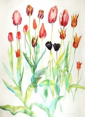 Roscullen Tulips painting by artist Jenny MATTHEWS