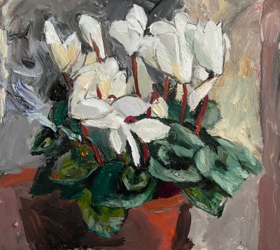 Scottish Artist John BROWN - White Cyclamen