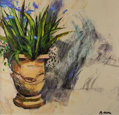Scottish Artist John BROWN - Agapanthus in a Pot