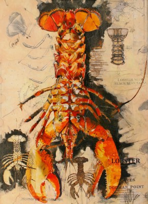 Scottish Artist Malcolm CHEAPE - Lobster Sketch