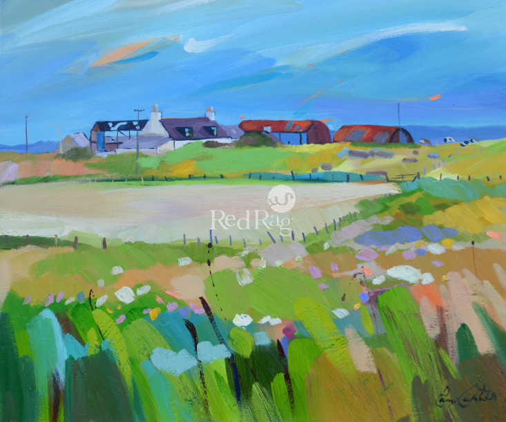 Pam CARTER - Farm Clusters, Gigha